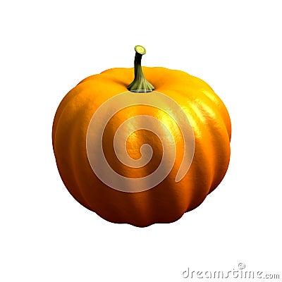The ripe pumpkin