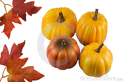 Ripe pumpkins and leaves