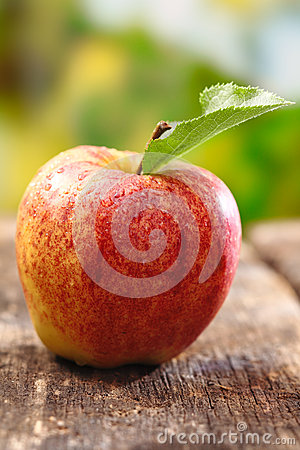 Ripe red apple with water droplets