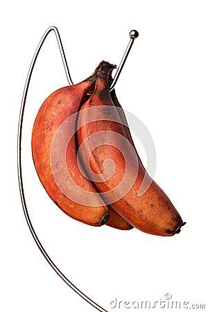 Ripe Red Bananas Bunch