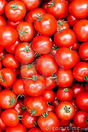Free Ripe Red Juicy Tomatoes Royalty Free Stock Images - 21506809