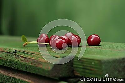 Ripe sour cherry