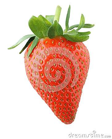 Free Ripe Strawberry Stock Photo - 24110660