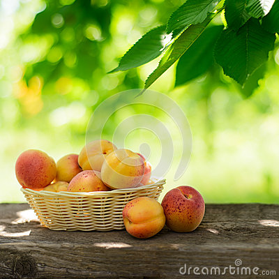 Free Ripe Tasty Apricots In The Basket On The Old Wooden Table Royalty Free Stock Image - 32511016