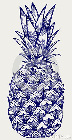 Free Ripe Tasty Pineapple Royalty Free Stock Photography - 50738187