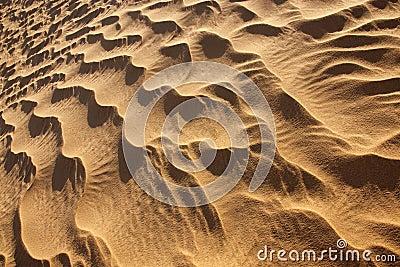 Rippled desert sand pattern in daylight