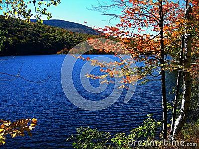 Rippled Lake in Fall