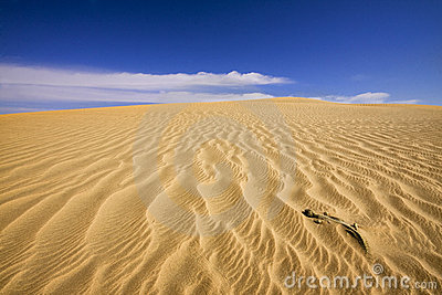Rippled sand in desert
