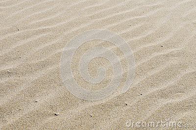 Rippled sandy beach for background