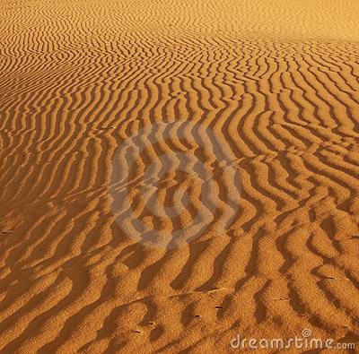 Free Ripples In The Sand Stock Image - 1634161