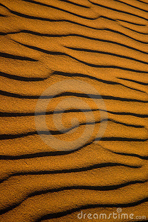 Free Ripples Of Sand Royalty Free Stock Photography - 9565367