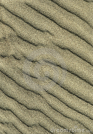 Ripples of Sand