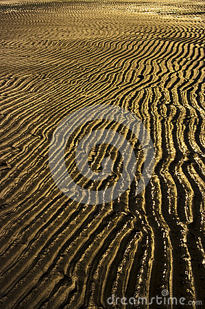 Free Rippling Sands Royalty Free Stock Photography - 45552807