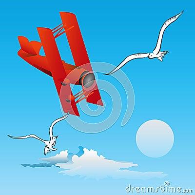 Risk of Flight - birds