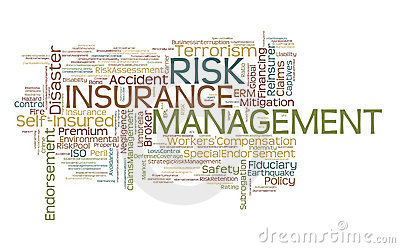 Risk Management and Insurance subject of arts