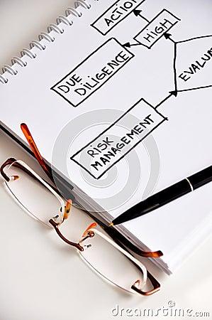 Risk management paper