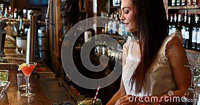 Ritratto del contatore della barra di pulizia della cameriera al banco stock footage