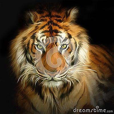 Ritratto della tigre