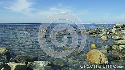 Riva rocciosa del mare con chiara acqua blu archivi video