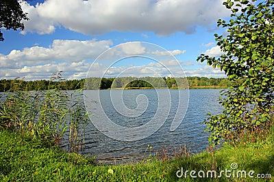Rivage de lac