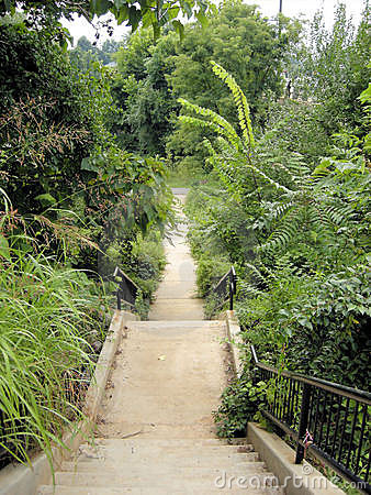 Rivanna Trail 1