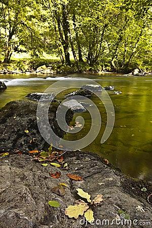 River barle