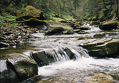 The river in Carpathian mountains.