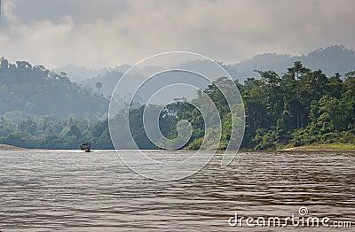 River cruise into the jungle