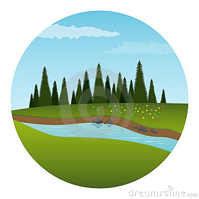 River and forest