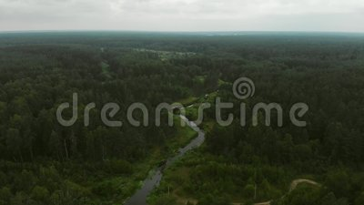 River in the forest. Aerial footage of small river in european forest shot from drone in summer cloudy day stock video