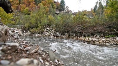 River in the forest at Karditsa Thessaly Greece stock video footage