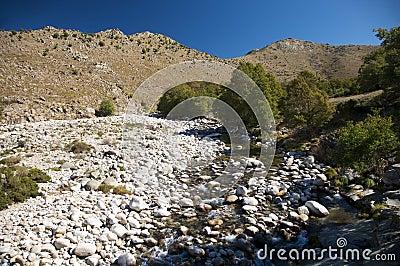 River full of stones