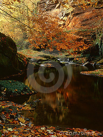 River Gelt, sandstone cliffs, Cumbria