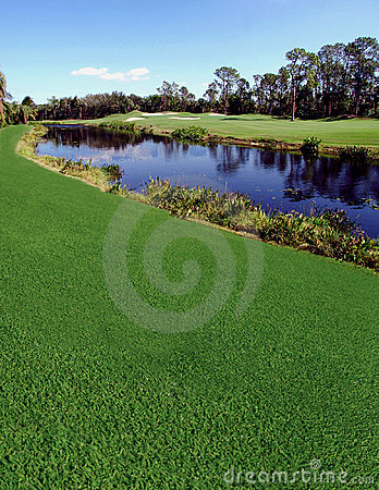 Free River & Golf Course Royalty Free Stock Photography - 777157