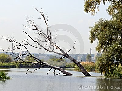 River Irpen Royalty Free Stock Photos - Image: 7896198