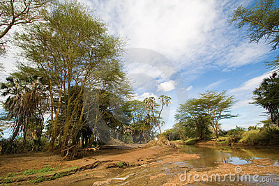 River Landscape in Tsavo National Park
