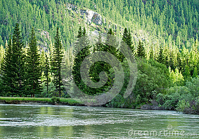 River Mountains Forest Stock Photo