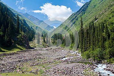 River in mountains of Kyrgyzstan