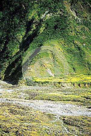 River plateau farm and terraced fields
