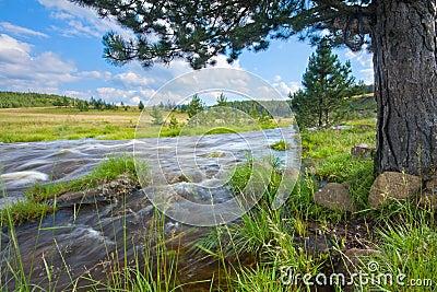 River Rzav 1