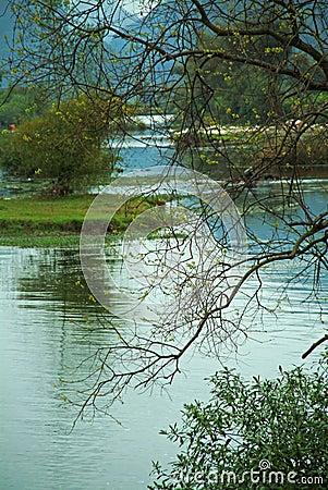 Free River Scenery Royalty Free Stock Photos - 4776398