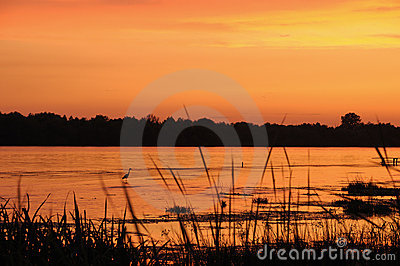 River shore on twilight