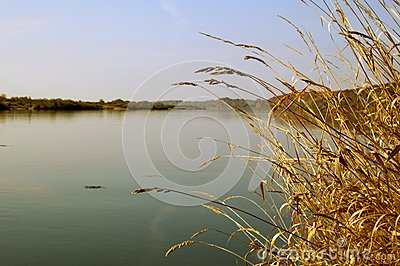 The river in silent morning