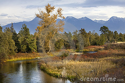 River Snow Mountains Fall Colors Montana