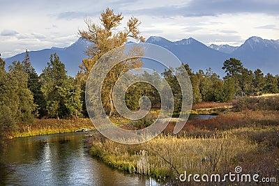 River Snow Mountains Fall Colors Montana