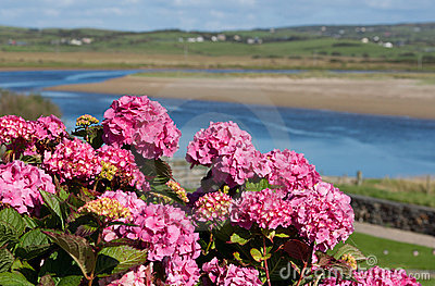 River view in Lahinch, Co. Clare