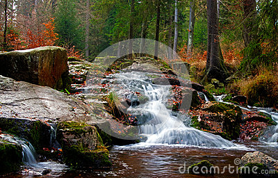 River waterfall in the forest
