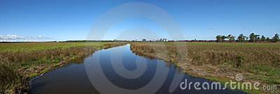 River Wetlands Panorama, Panoramic, Nature Banner