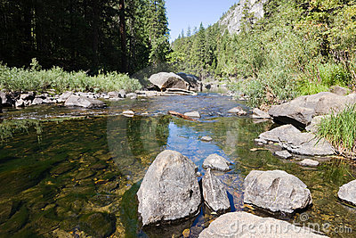 River Yosemite National Park