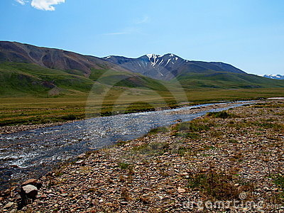 The rivers of plateau Ukok, mountain Altai